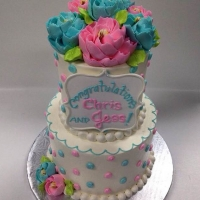 Pink and Blue Baby 2 tier